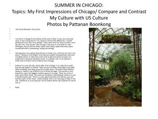 SUMMER IN CHICAGO: Topics: My First Impressions of Chicago