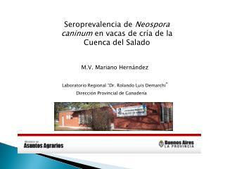 Seroprevalencia de Neospora caninum en vacas de cr a de la Cuenca del Salado