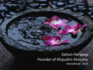 Sekiun Harigaya Founder of Mujushin Kenjutsu Arrowhead  2010