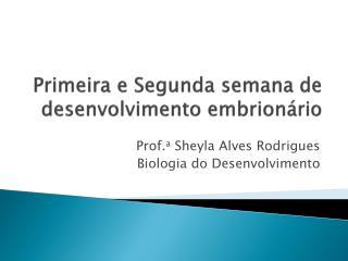 Primeira e Segunda semana de desenvolvimento embrion rio