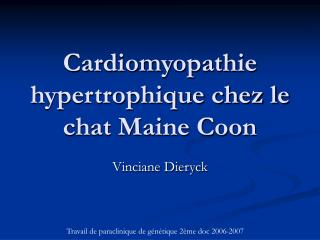 Cardiomyopathie hypertrophique chez le chat Maine Coon