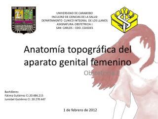 Anatom a topogr fica del aparato genital femenino