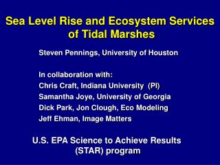 Sea Level Rise and Ecosystem Services  of Tidal Marshes