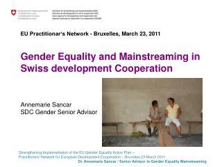 SDC Gender Mainstreaming Strategies