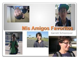 Mis Amigos Favoritos