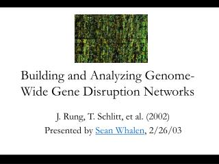 Building and Analyzing Genome-Wide Gene Disruption Networks
