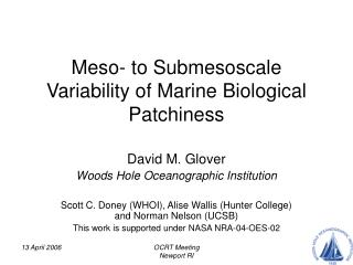 Meso- to Submesoscale Variability of Marine Biological Patchiness