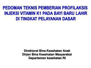 Direktorat Bina Kesehatan Anak Dirjen Bina Kesehatan Masyarakat Departemen kesehatan RI