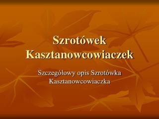Szrot wek Kasztanowcowiaczek
