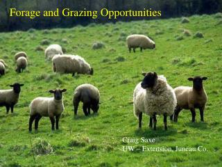 Forage and Grazing Opportunities