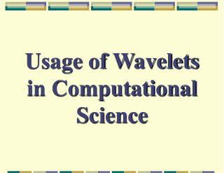 Usage of Wavelets in Computational Science