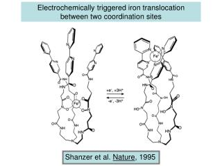 Electrochemically triggered iron translocation between two coordination sites