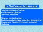 La Clasificaci n de las plantas