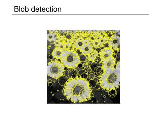 Blob detection