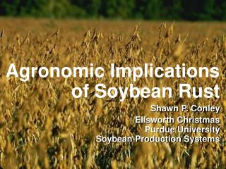 Agronomic Implications of Soybean Rust Shawn P. Conley Ellsworth Christmas Purdue University Soybean Production Systems