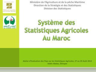 Syst me des Statistiques Agricoles Au Maroc