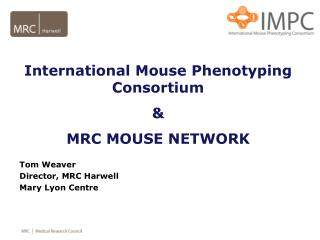 International Mouse Phenotyping Consortium   MRC MOUSE NETWORK  Tom Weaver Director, MRC Harwell Mary Lyon Centre