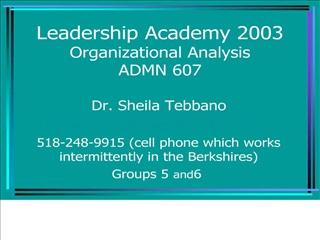 Leadership Academy 2003 Organizational Analysis ADMN 607