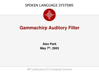Gammachirp Auditory Filter