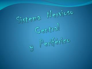 Sistema  Nervioso Central   y  Perif rico