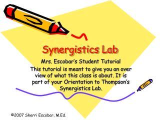 Synergistics Lab