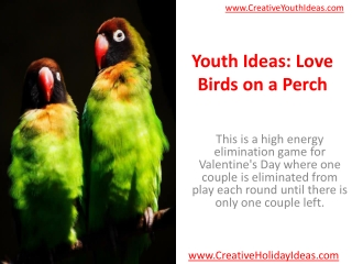 Youth Ideas: Love Birds on a Perch