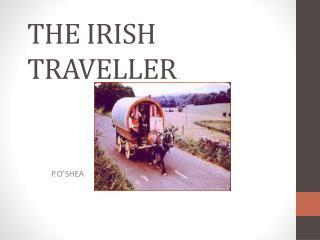 THE IRISH TRAVELLER
