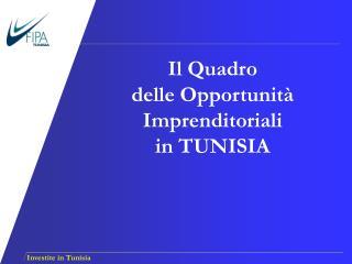 Il Quadro  delle Opportunit  Imprenditoriali   in TUNISIA