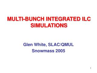 MULTI-BUNCH INTEGRATED ILC SIMULATIONS