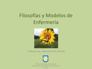 Filosof as y Modelos de Enfermer a