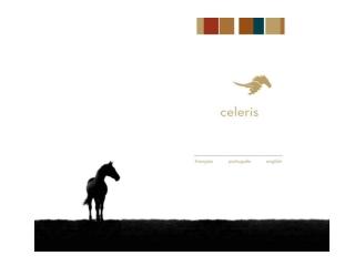 Celeris Boots