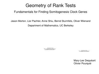 Geometry of Rank Tests Fundamentals for Finding Somitogenesis Clock Genes  Jason Morton, Lior Pachter, Anne Shiu, Bernd