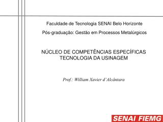 Faculdade de Tecnologia SENAI Belo Horizonte P s-gradua  o: Gest o em Processos Metal rgicos