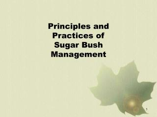 Principles and Practices of Sugar Bush Management