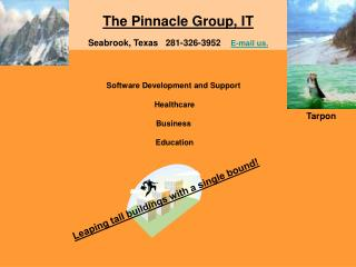 The Pinnacle Group, IT