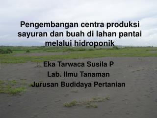 Pengembangan centra produksi sayuran dan buah di lahan pantai  melalui hidroponik