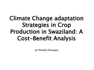 Climate Change adaptation Strategies in Crop Production in Swaziland: A Cost-Benefit Analysis  by Phindile Shongwe
