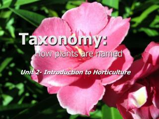 Taxonomy:   How plants are named