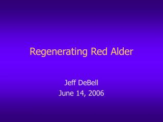 Regenerating Red Alder