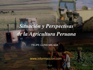 Situaci n y Perspectivas  de la Agricultura Peruana