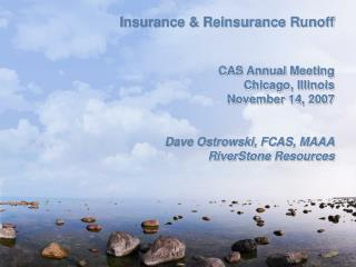 Insurance  Reinsurance Runoff   CAS Annual Meeting Chicago, Illinois November 14, 2007
