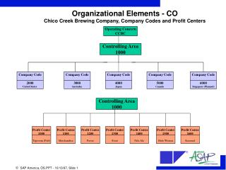 Organizational Elements - CO Chico Creek Brewing Company, Company Codes and Profit Centers