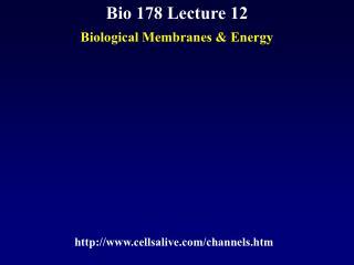 Bio 178 Lecture 12