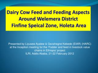 Dairy Cow Feed and Feeding Aspects Around Welemera District  Finfine Speical Zone, Holeta Area
