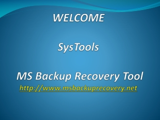 MS Backup Recovery Tool