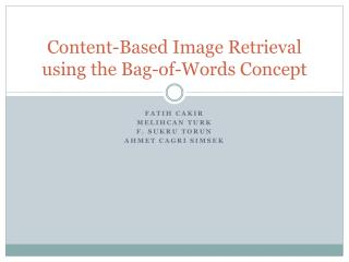 Content-Based Image Retrieval using the Bag-of-Words Concept