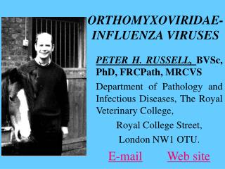 ORTHOMYXOVIRIDAE- INFLUENZA VIRUSES
