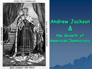 Andrew Jackson    the Growth of American Democracy