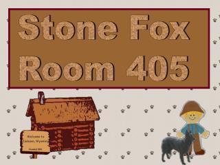 Stone Fox Room 405