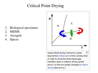 Critical Point Drying